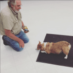dog_bowing