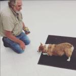 dog_bowing