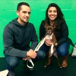graduate_boston_terrier